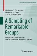 A Sampling of Remarkable Groups