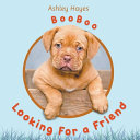 Booboo Looking for a Friend Book PDF