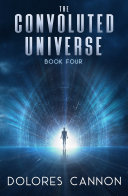 The Convoluted Universe: Book 4
