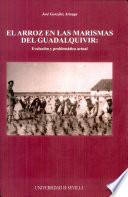 El arroz en las marismas del Guadalquivir  : evolución y problemática actual