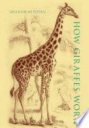 How Giraffes Work