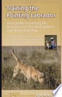 Training the Pointing Labrador
