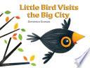 Little Bird Visits the Big City