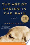 The Art of Racing in the Rain LP image