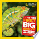 Little Kids First Big Book of Reptiles and Amphibians Book PDF