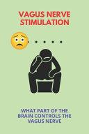 Vagus Nerve Stimulation Book