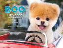 Boo  Little Dog in the Big City