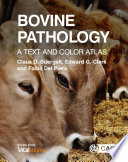 Bovine Pathology