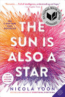 The Sun Is Also a Star Pdf/ePub eBook