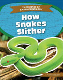 How Snakes Slither