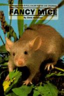Fancy Mice