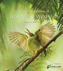 A Visual Celebration of Borneo s Wildlife