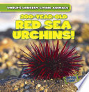 200 Year Old Red Sea Urchins  Book