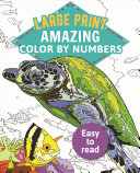 Large Print Color by Numbers 2 Book