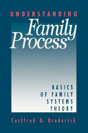 Understanding Family Process