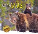 Pdf Born Wild 2