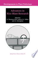 Advances in Rice Blast Research
