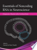 Essentials of Noncoding RNA in Neuroscience