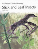 A Complete Guide to Breeding Stick and Leaf Insects