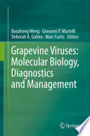 Grapevine Viruses: Molecular Biology, Diagnostics and Management