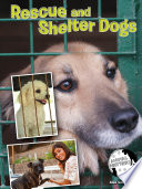 Rescue and Shelter Dogs