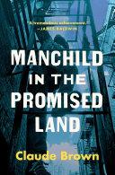 Manchild in the Promised Land Pdf/ePub eBook