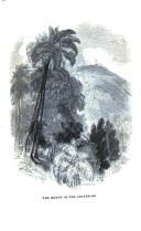 Side 31