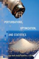 Perturbations, Optimization, and Statistics