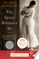 The Space Between Us  : A Novel