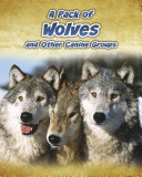 A Pack of Wolves: and Other Canine Groups