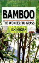 Bamboo  The Wonderful Grass