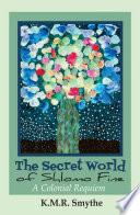 The Secret World Of Shlomo Fine