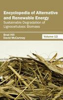 Encyclopedia of Alternative and Renewable Energy Book