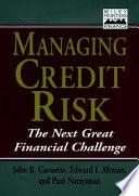 Managing Credit Risk Book