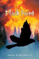 Pdf Flash Point Telecharger