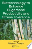 Biotechnology to Enhance Sugarcane Productivity and Stress Tolerance Book