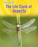 The Life Cycle of Insects