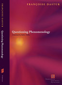 Questions of Phenomenology