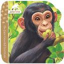 Chimpanzee Book PDF