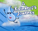 A Raindrop's Journey