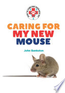 Caring for My New Mouse