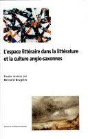 L'espace littéraire dans la littérarure et la culture anglo-saxonnes ebook