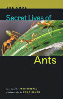 Pdf Secret Lives of Ants