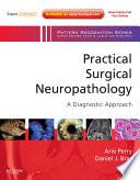 Practical Surgical Neuropathology  A Diagnostic Approach E Book Book