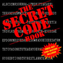 The Secret Code Book