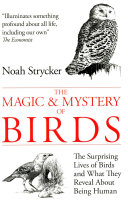 The Magic and Mystery of Birds