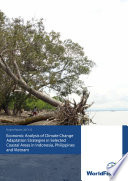 Economic analysis of climate change adaptation strategies in selected coastal areas in Indonesia  Philippines and Vietnam