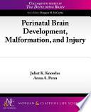 Perinatal Brain Development  Malformation  And Injury