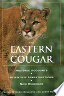 The Eastern Cougar
