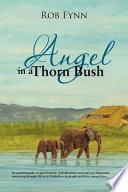 Angel In A Thorn Bush Book
